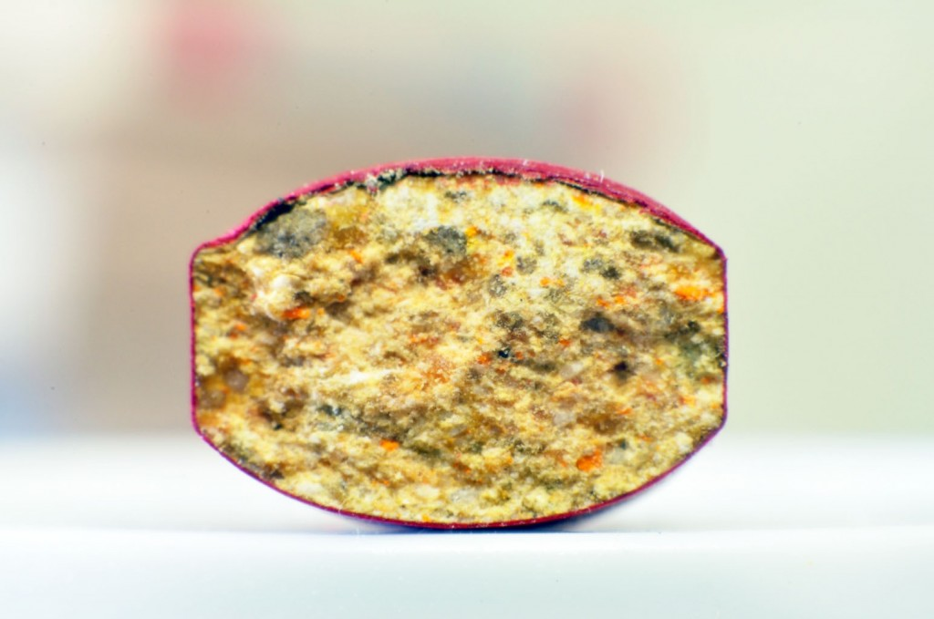 Cross section view of other multivitamin's tablet